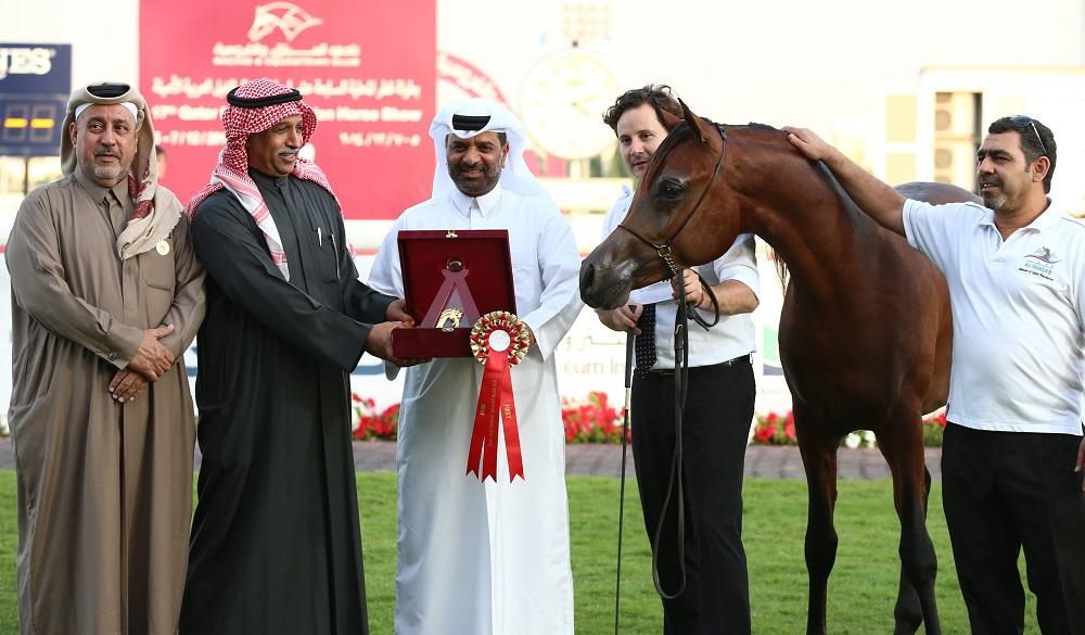 Qatar Horse Show2
