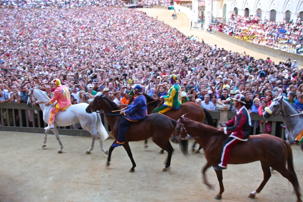 d_d_italia-siena-palio-racehorses