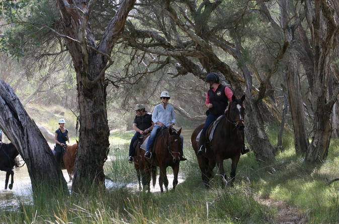 neergabby-horse-riding-tour-in-perth-241613