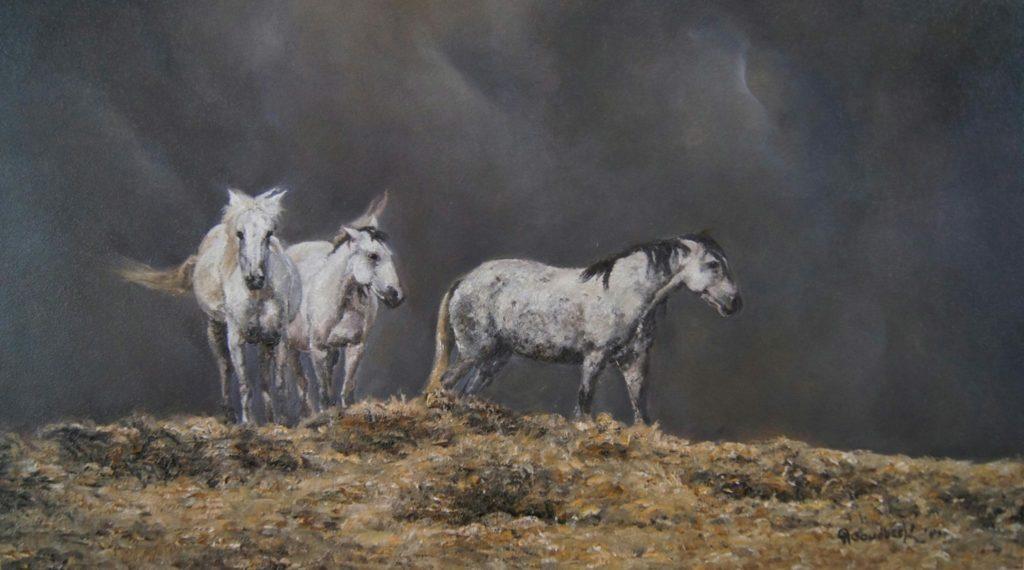 8-wild-horses