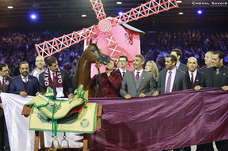 arab-horse-world-championship-2013-paris-6